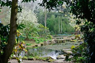 View from the Rockery in April